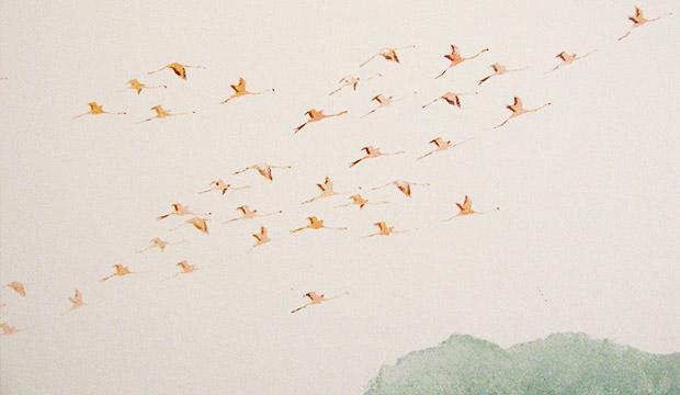 Pochoirs vol de flamands roses  dans chambre d'enfant